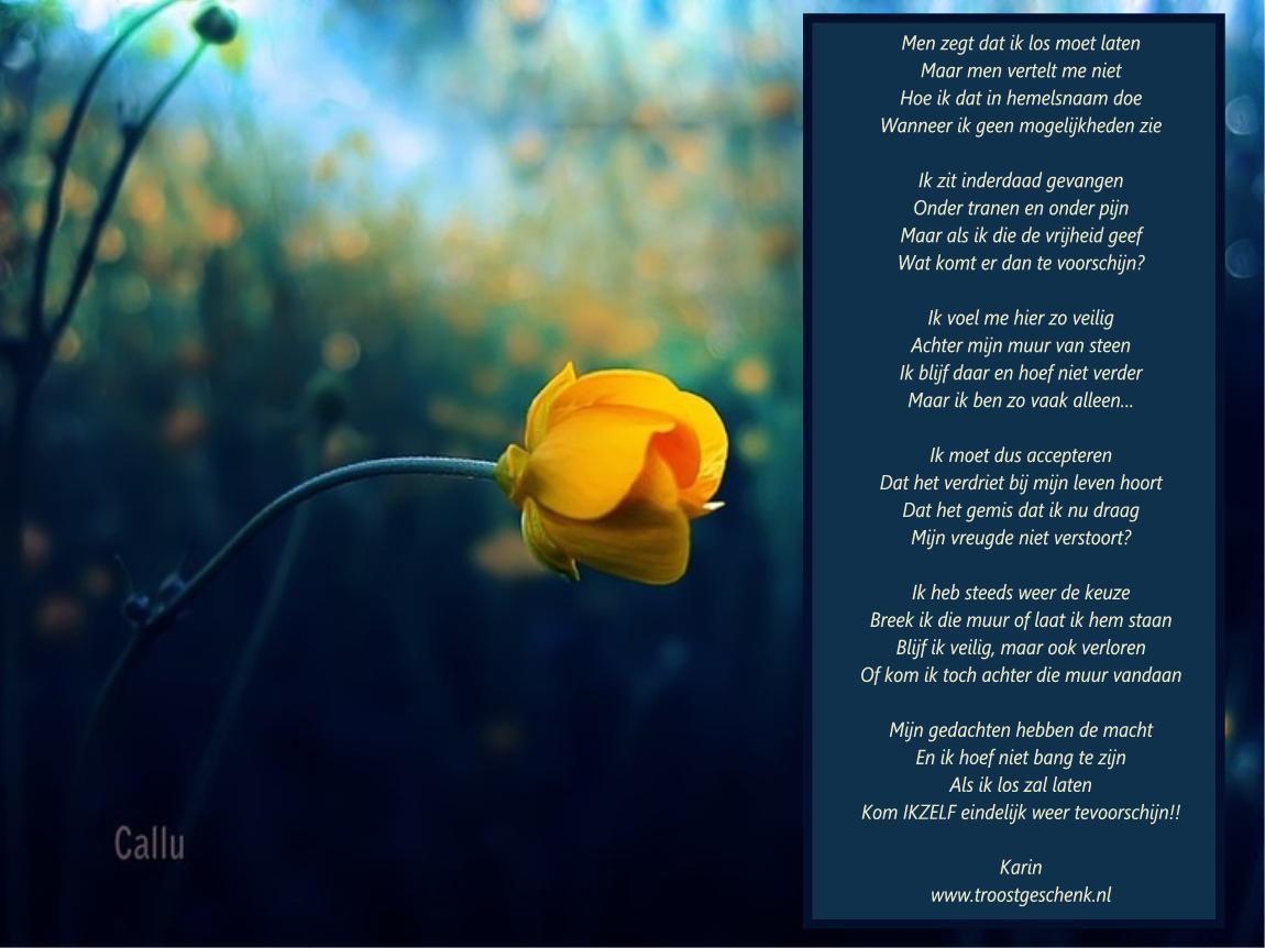 Vaak Loslaten - Troostgeschenk Blog #CQ46