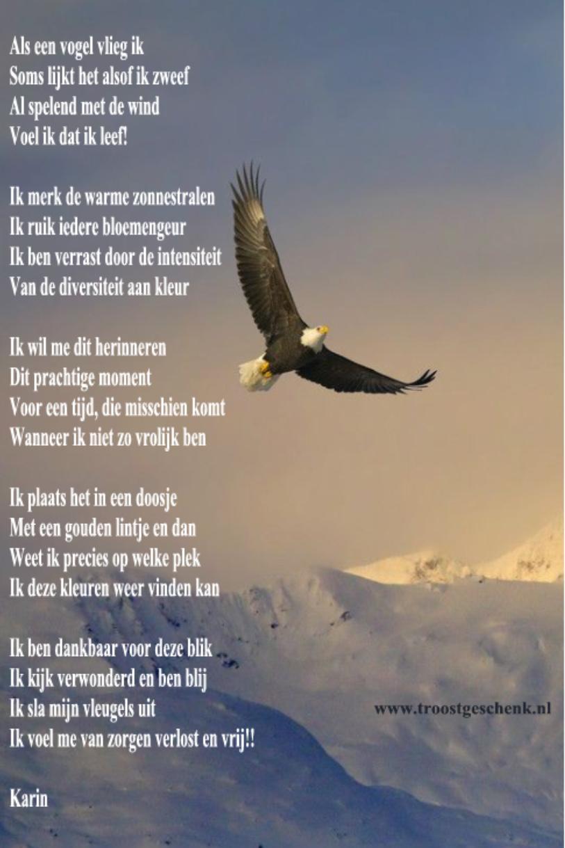 Herman van Veen - Als Je Komt