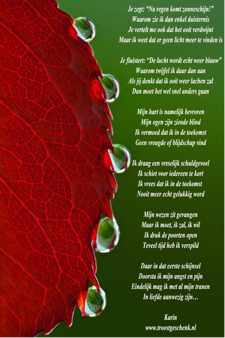 Gedicht Je Zegt Na Regen Komt Zonneschijn Troostgeschenk