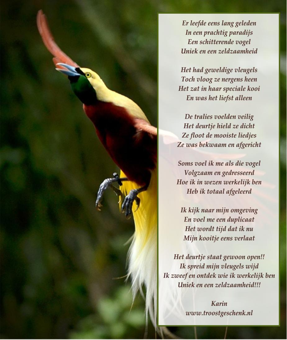 Gedicht Er leefde eens lang geleden - Troostgeschenk Blog