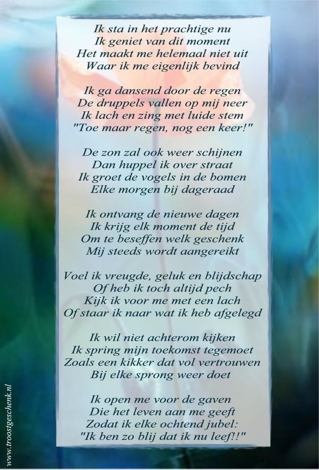 Gedicht Klaproos Troostgeschenk Blog