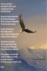 Als een vogel vlieg ik