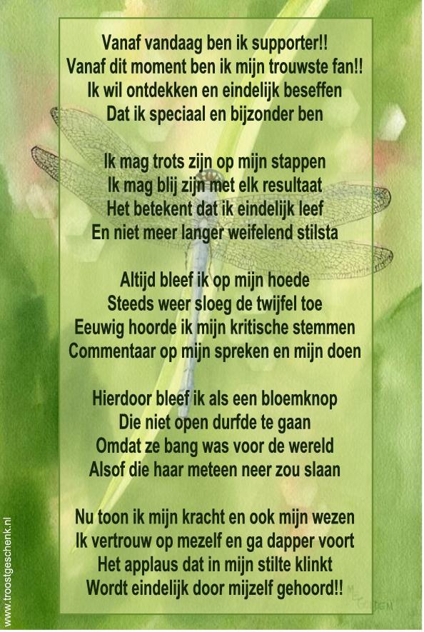 Gedicht Troostgeschenk
